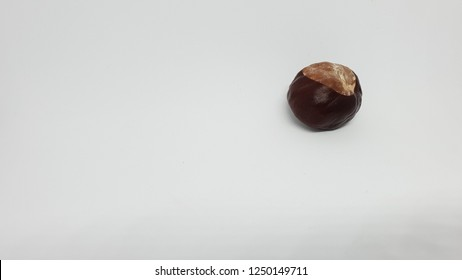 brown chestnut isolated on white background studio image