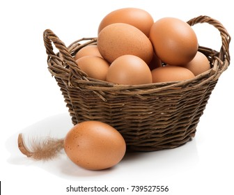 Brown chicken eggs in a basket with one on the surface in the foreground isolated on white background.