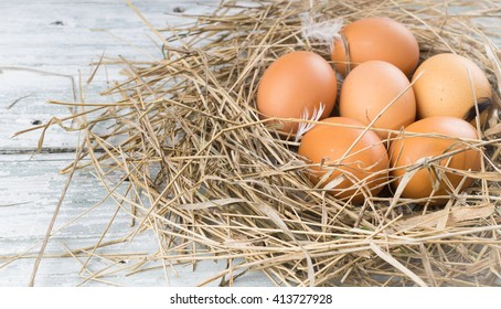 Brown chicken eggs in hay nest. Sackcloth and wooden background