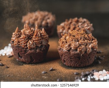 Brown chocolate cupcake with nuts creme, cocoa and cinnamon spices on dark background.