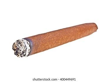 Brown cigar burned on white background