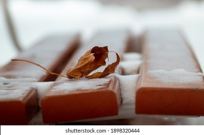 Brown dead leaf on the brown parkbench covered with snow. Cold winter image. Wabi sabi style.