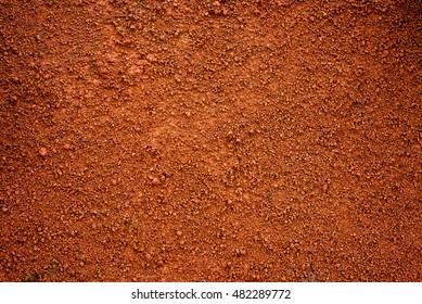 Brown dirt (soil) as background.