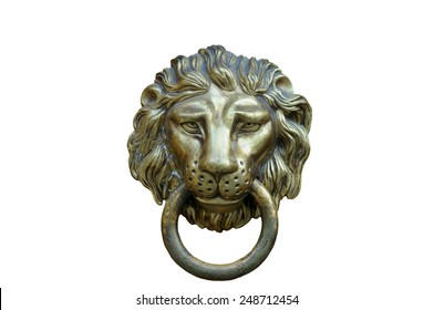 A brown door with beautiful bronze retro style carved lion head handle (knocker)