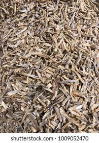 Brown dried small bilis fish