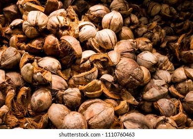 Brown dry husk of coconut peel.