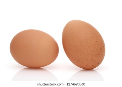 Brown egg on a white background, in a studio shot