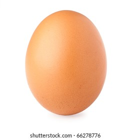 Brown egg on white background