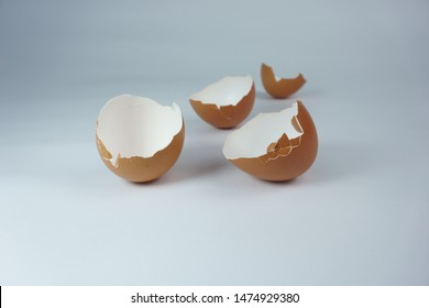 brown egg shells isolated on white background