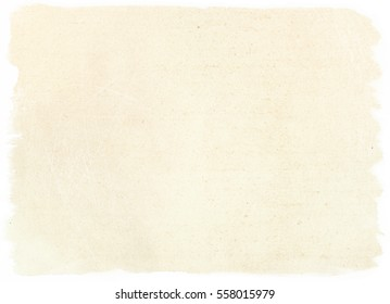 brown empty old vintage paper background. Paper texture - Shutterstock ID 558015979