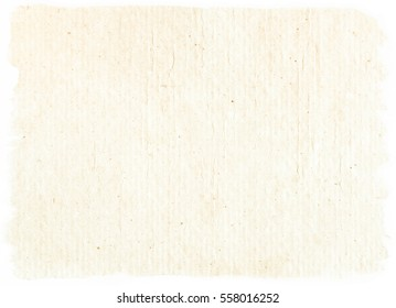 brown empty old vintage paper background. Paper texture - Shutterstock ID 558016252