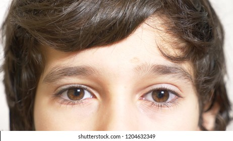 The brown eyes of a boy with long black eyelashes. he looks from under a long curly forelock. close-up