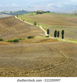 brown field and farm road in Tuscany