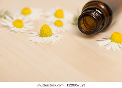Brown glass bottle on a wooden background with camomille flowers with copy space