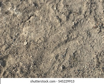 brown, gray soil floor, surface background floor