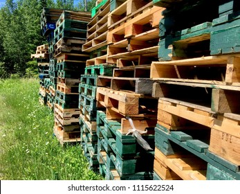 Brown, Green and Weathered Pallets Stacked by the Edge of the  Forest