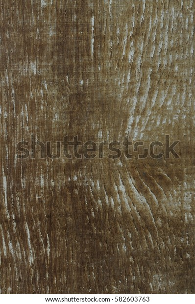 brown grunge wood polished white texture background