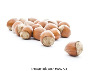 brown haselnuts isolated on white