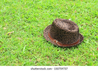 brown hat fall on the grass