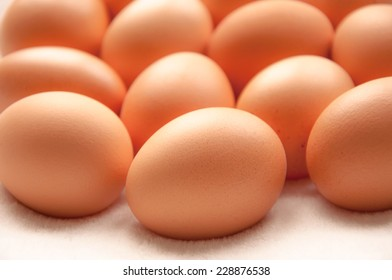 Brown hens eggs on a white background