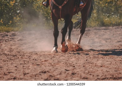 brown horse feet making dust in sand field. running gallop in summer - vintage retro look