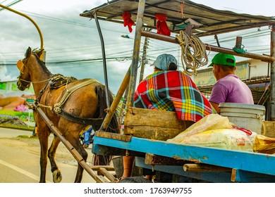 Ein braunes Pferd ist in eine Kutsche geschossen. Pferdewagen in Kolumbien.