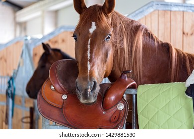 brown horse leather saddle in stable closeup