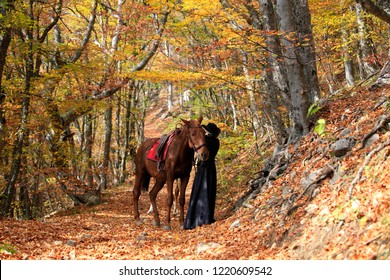 Brown horse and woman in black in the autumn forest