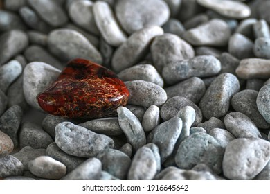 Brown jasper among the gray gravel on the sea beach. Ural jasper is found on an ordinary river bank. Natural background with pebbles and a small brown stone.