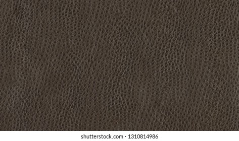 Brown leather background surface. Vintage fashion background for designers and composing collages. Luxury textured genuine leather of high quality.