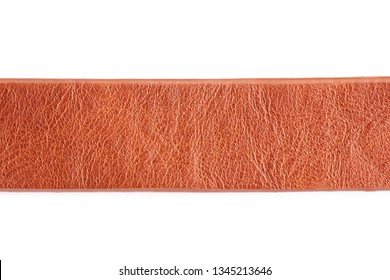 Brown leather belt strap closeup isolated on white.