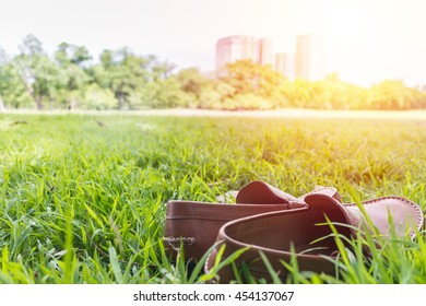 Brown leather shoes on the grass