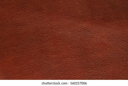 brown leather skin texture