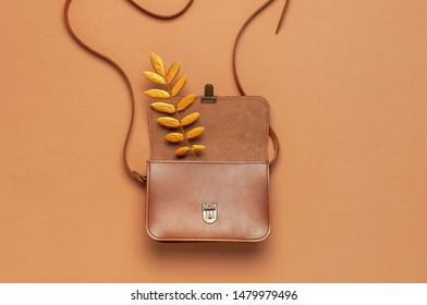 Brown leather women bag and golden autumn leaf on brown background top view flat lay copy space. Fashionable women's accessories. Autumn Fashion Concept. Stylish Lady Clothes, fall Leaves