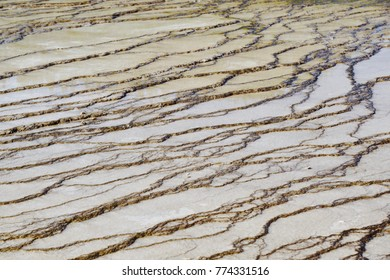 Brown limestone at Midway Geyser Basin in Yellowstone Park for textures and backgrounds