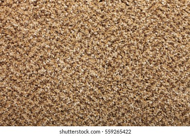 Brown Medium Pile Carpeting