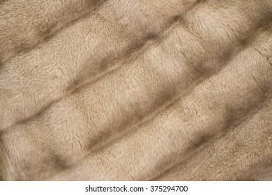Brown mink fur coat texture background