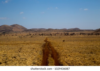 Brown Muddy Road in African Grasslands In Front of Hills