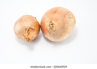 brown onion on white background