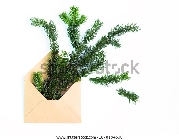 brown open kraft paper envelope with green spiky sprigs of needles lies on a white background. concept of waiting for christmas and new year. horizontal image, soft focus, copy space