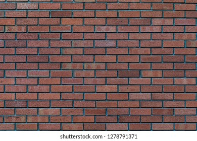 Brown and orange rustic brick wall - high quality texture / background
