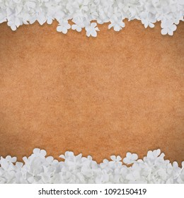 brown paper background or sepia soft pattern texture with delicate flower frames