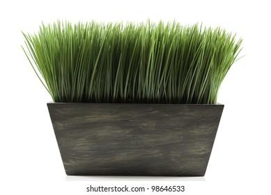Planter Box Images Stock Photos Amp Vectors Shutterstock