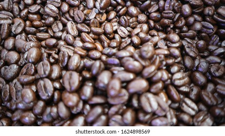 Brown roasted Coffe beans are shining