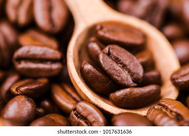 Brown roasted coffee beans, seed with spoon. Espresso dark, aroma, black caffeine drink. Closeup isolated energy mocha, cappuccino ingredient.