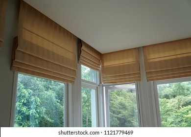 brown roman blind shade curtain and shadow tree forest mountain background
