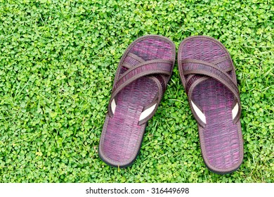 brown sandal on the green grass