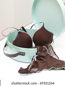 Brown seductive lingerie in blue present box
