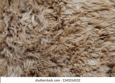 brown sheepskin fur texture background