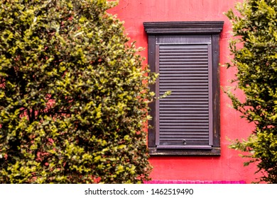 brown shutters on a wooden window on a pink wall, and in the foreground green bushes